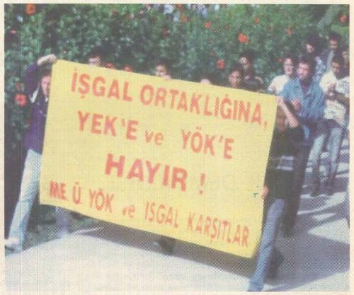 sayi29a